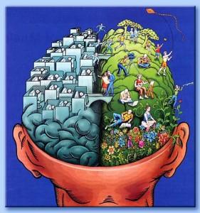 emisferi_cervello